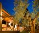 Ein Museum für den Olivenbaum und die Olive